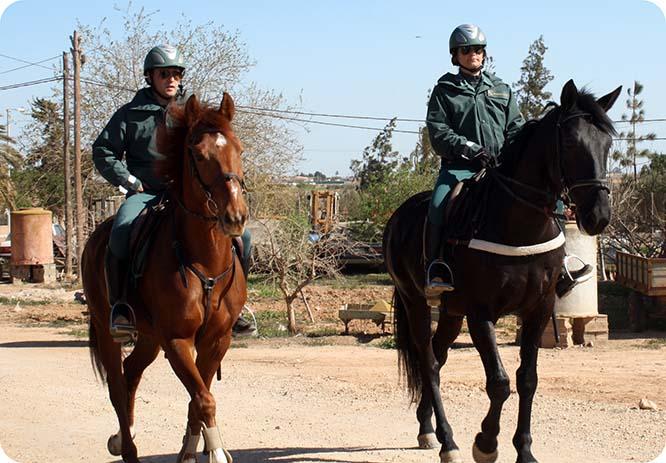 La Guardia Civil se refuerza con un Escuadrón de Caballería